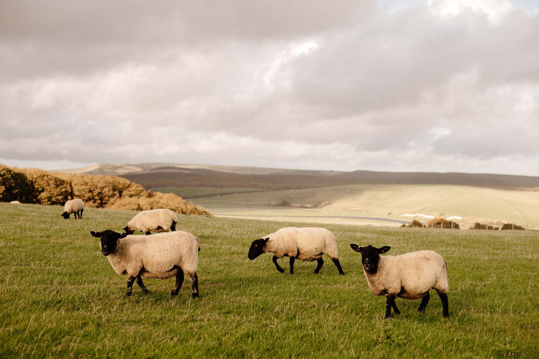seaford head uk landscapes